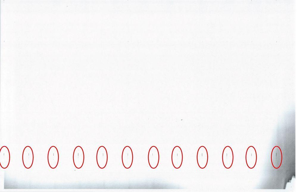 V80-DOC_003(1).jpg