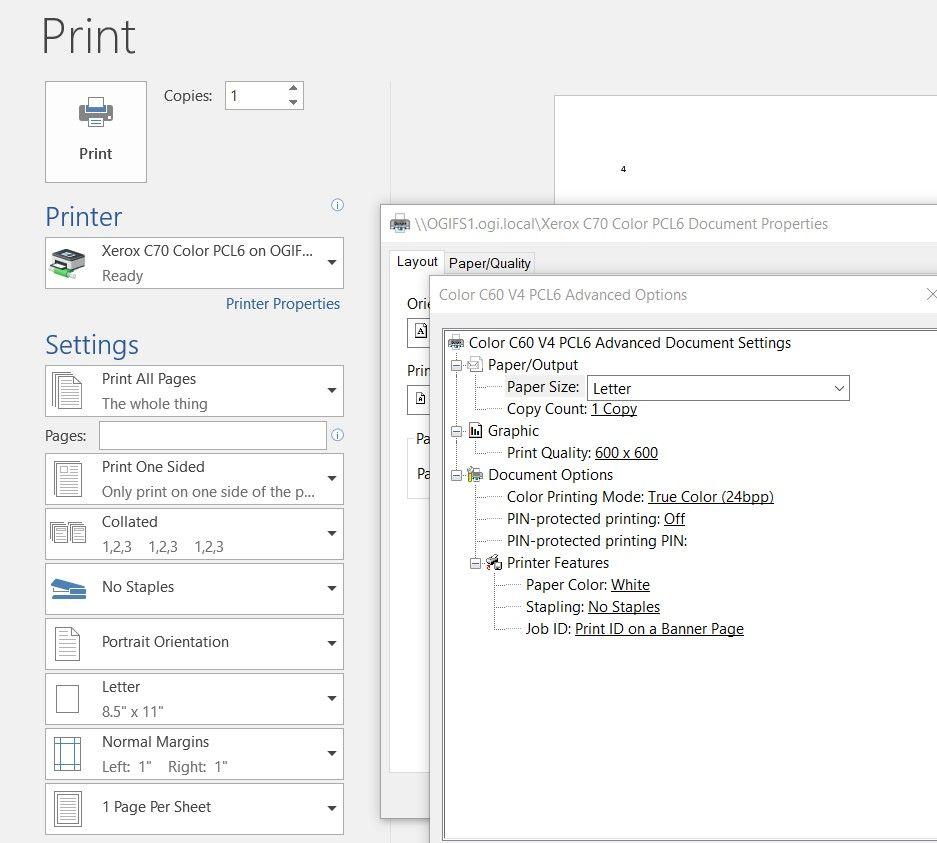 MS Word Printer Properties