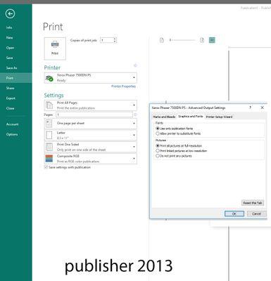 publisher 2013.jpg