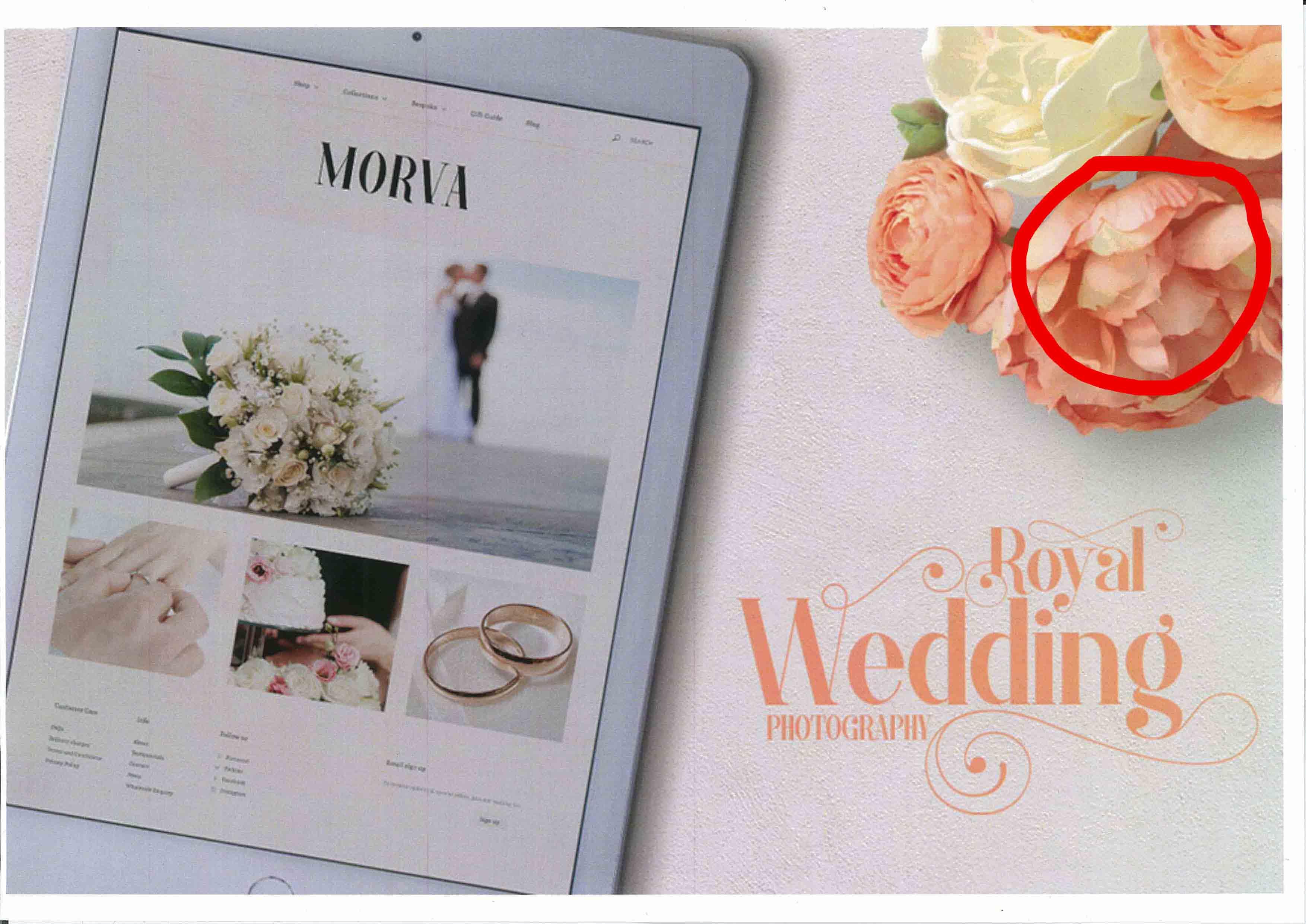 wedding test scan.jpg