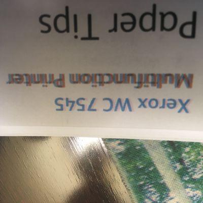 IMG-5283.JPG