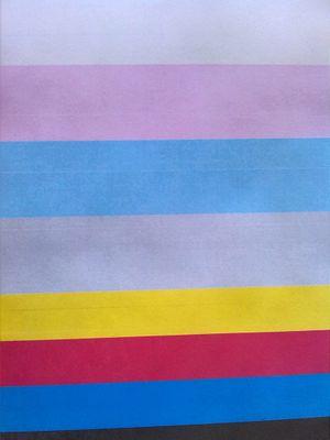 Fine thin lines (horizontal) in every print - xero